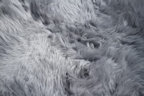 NEWZE sheepskin grey zoom