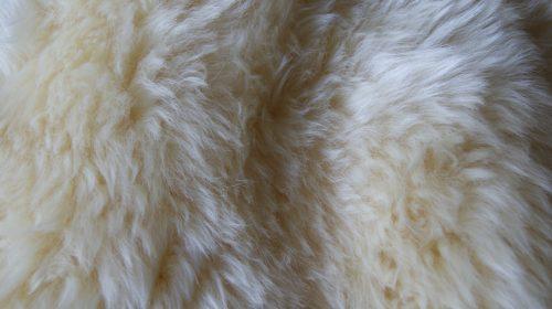 NEWZE sheepskin natural zoom